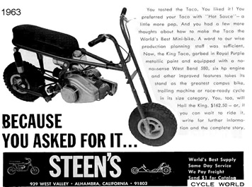 Steen's_ad